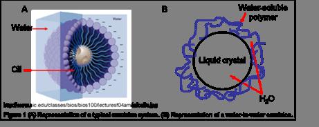 Перспективы применения липосомальных форм