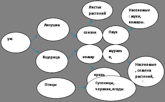 Экосистема дачного участка
