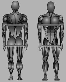 Пилатес: «Тело создается разумом»