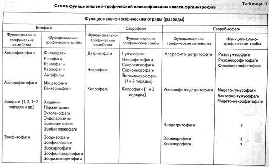 Основные принципы строения и функционирования экосистем и обитаемой биосферы в целом