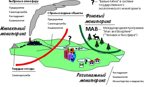 Основы организации экологического контроля за состоянием окружающей среды