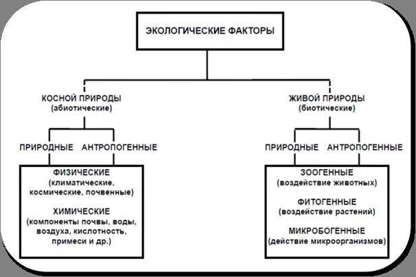 Аутекологія