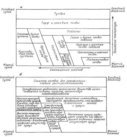 Геоаномальные зоны и биота
