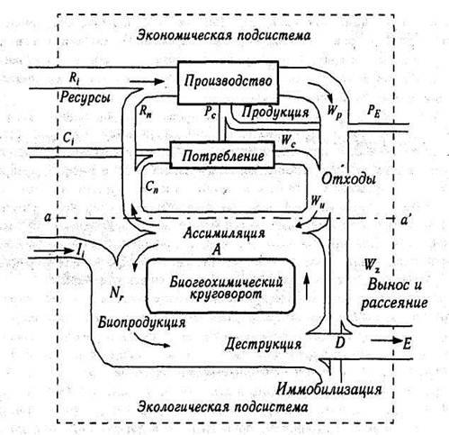 Экологическая политика и природоохранная деятельность России