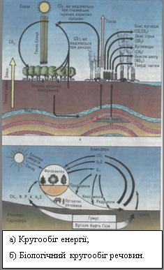 Організм і середовище
