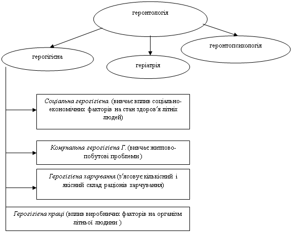 Геронтологія як наука