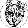 Ампутация тазовой конечности у собаки