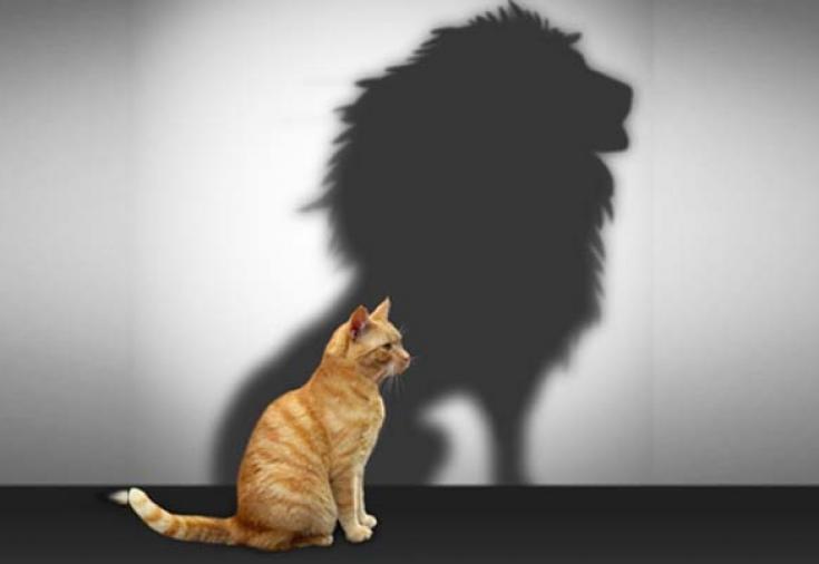 uverennost-v-sebe